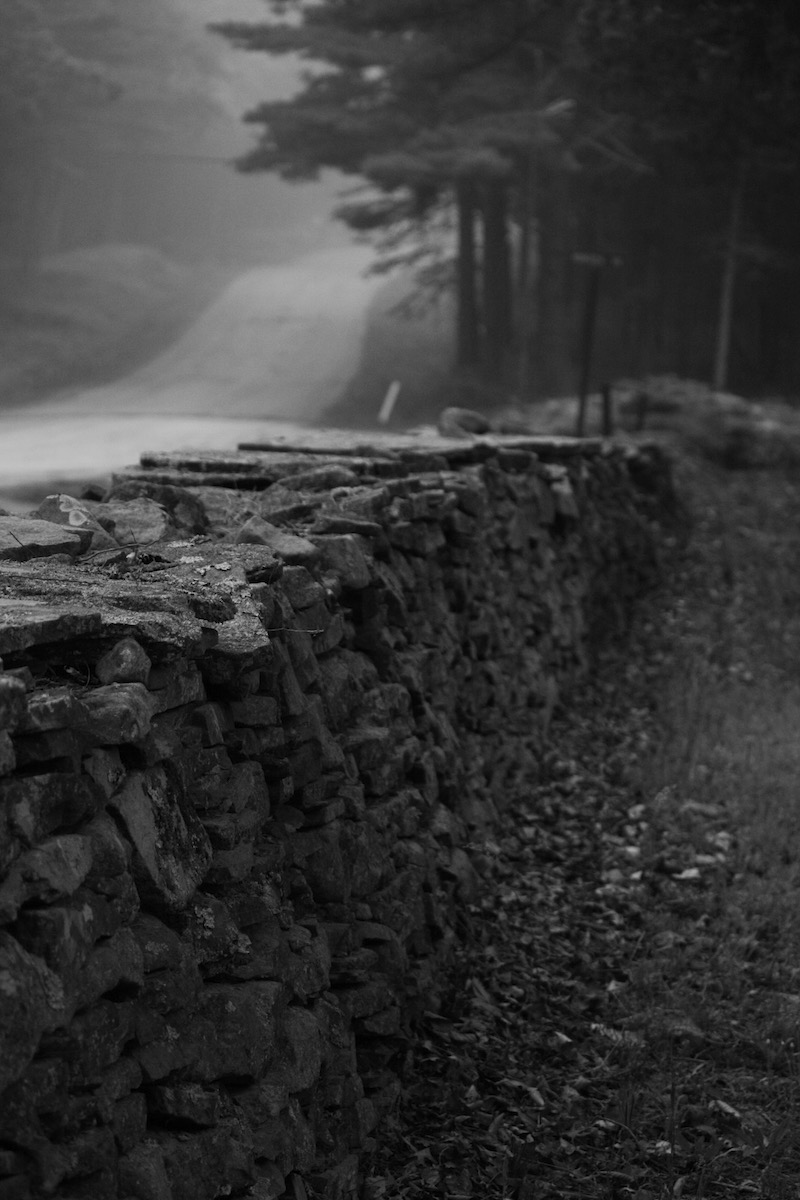 Mail Road, Stone wall running along Montoza Cemetary.  2010.  Barryville, NY