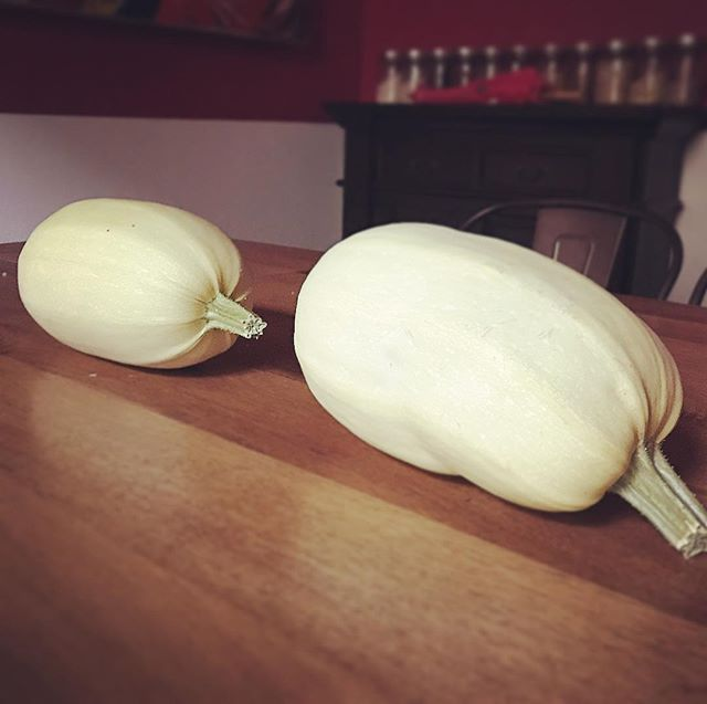Monday @ 8pm 1233 Spain Street  This week's theme is spaghetti squash! We've harvested 4 from the back yard. Come by early and get a squash to cook, or bring something that would go with spaghetti squash.