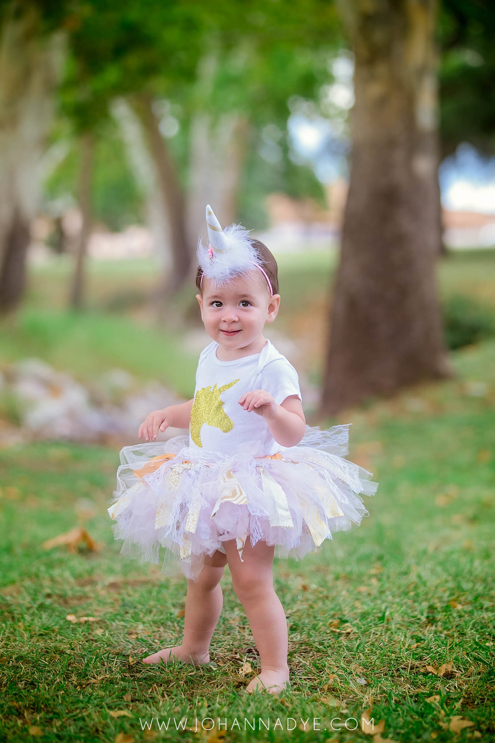 Fayetteville North Carolina First Birthday Photographer