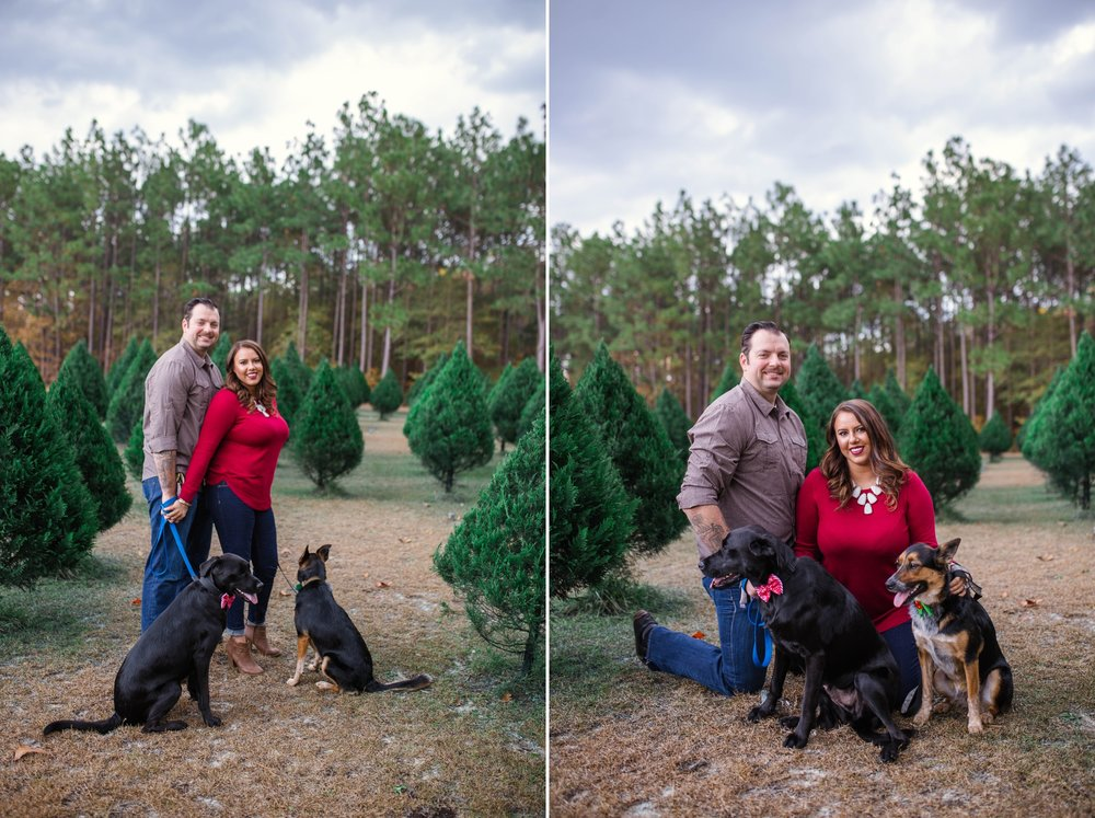 Christmas Engagement Photography  in Fayetteville North Carolina