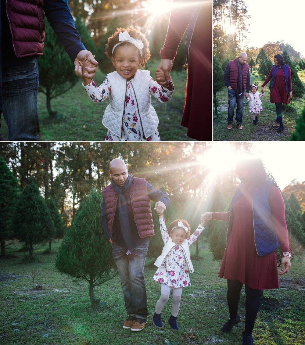 Family Photography Session at the Christmas Tree Farm in Fayetteville North Carolina
