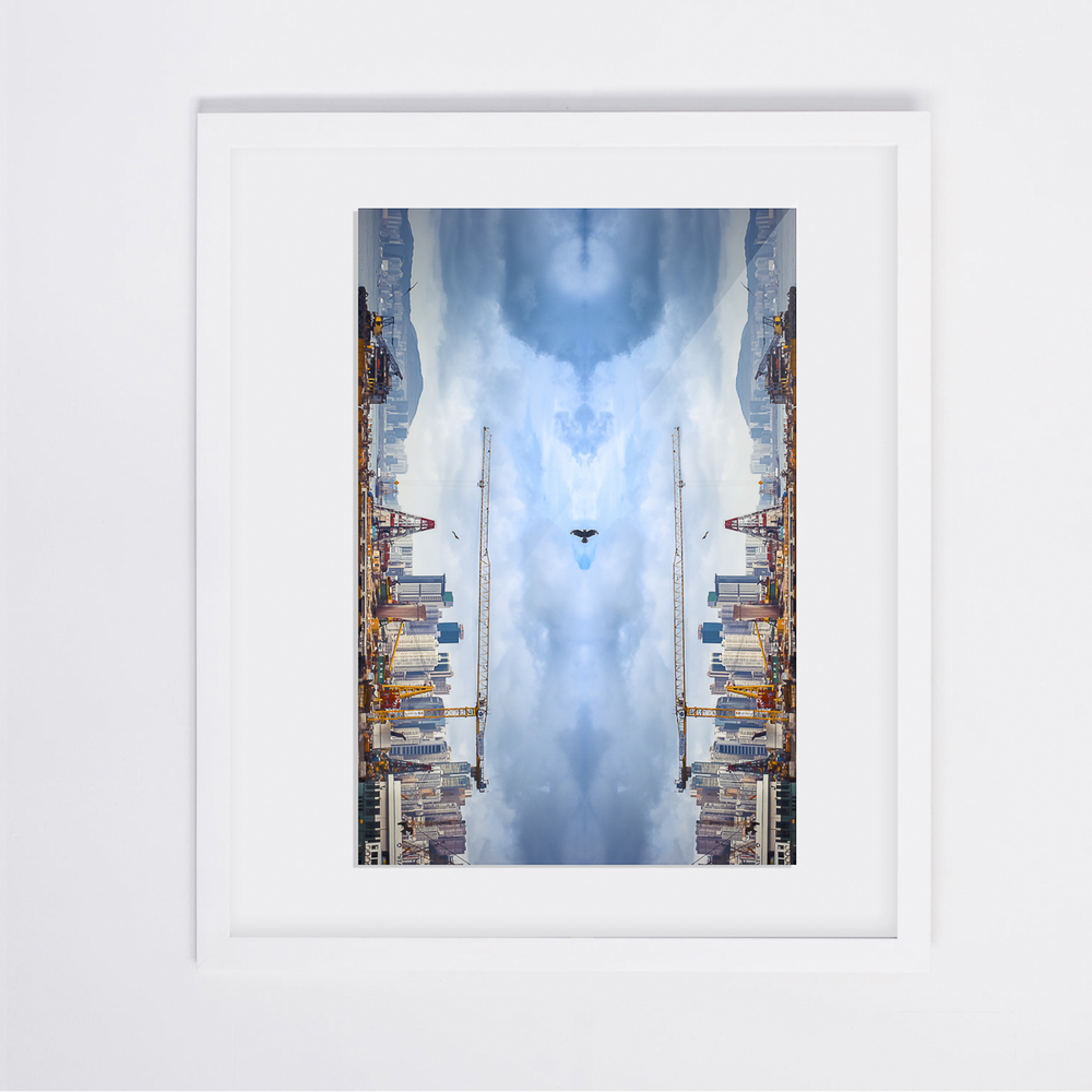 Bird VS Cranes