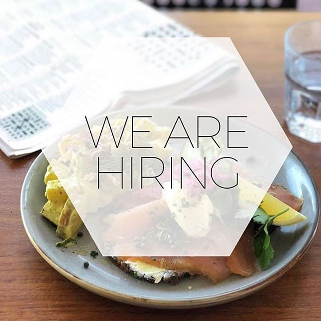 H I R I N G x 2 ✨ We are looking for an experienced and passionate full time Barista ☕️ + part time creative Chef to join the Tableview family. Please email your resume to:  Tableviewcafebruns@gmail.com  #hiring #jobs #work #brunswick #byron #cafe #barista #chef #employment #creative #coffeelover #cafework