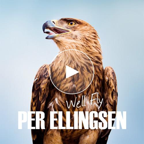 PerEllingsen_cover_we'll-fly-2.jpg