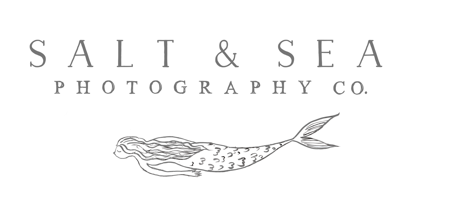 salt & sea photography co.