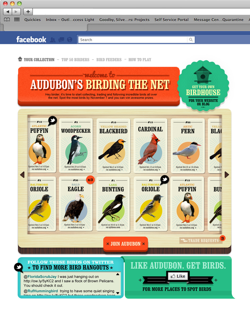 Birding the Net - on Facebook