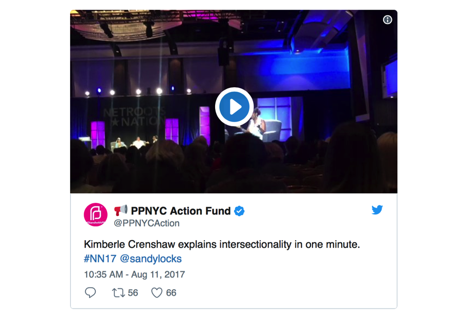 Twitter PPNYC action fund.png