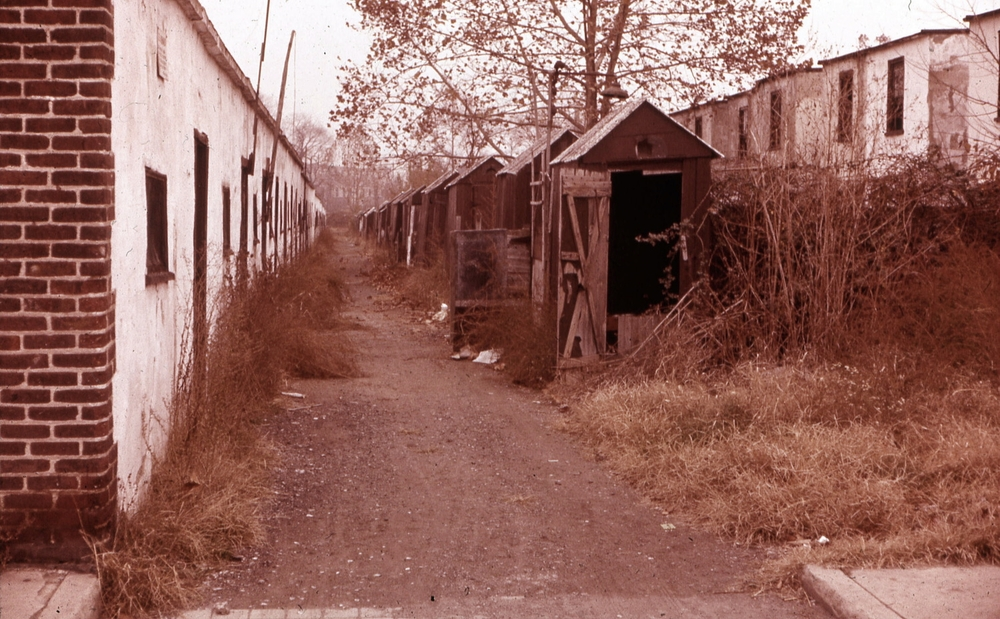 Back Street before demolition, ca. 1960s.   Courtesy of Salvatore Boccuti.