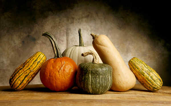 Tis the season for decorative gourds, sugary lattes, colorful leaves AND WONDERFUL BOOK HAPPENINGS!