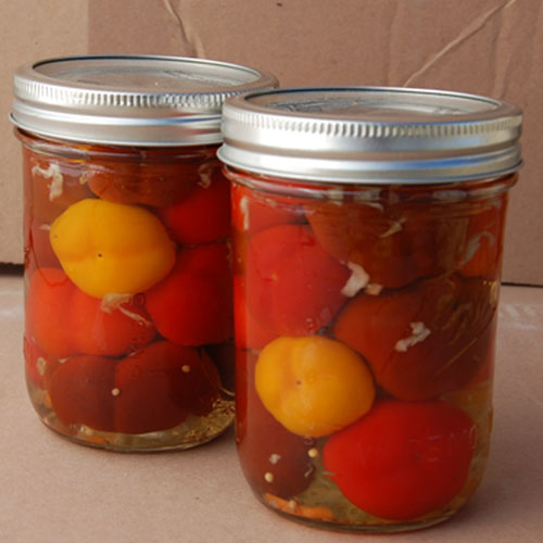 Pickled Mini Bell Peppers