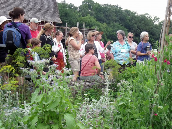 Diane's garden tour