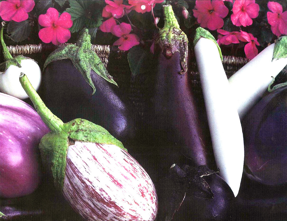 Heirloom Eggplant
