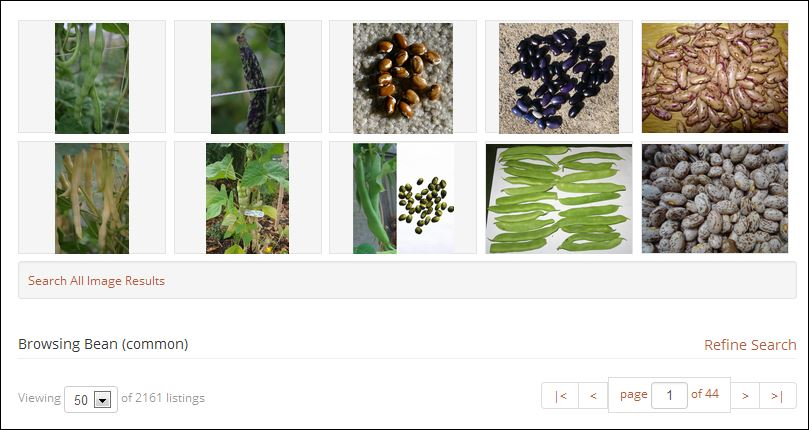 Online Seed Exchange