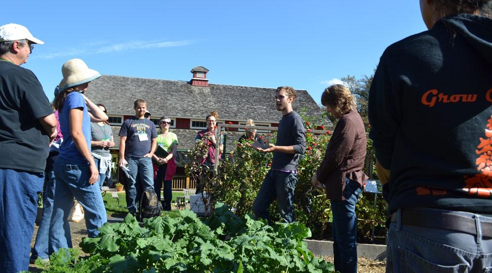 Seed school in the garden