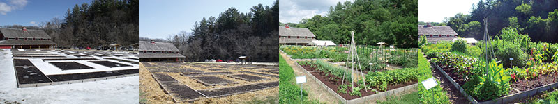 Diversity Gardens throughout the seasons at Seed Savers Exchange
