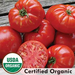 Kanner Hoell Organic Tomato
