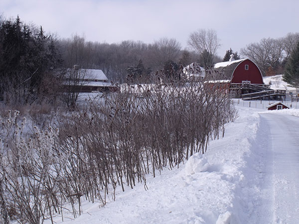 January at Heritage Farm