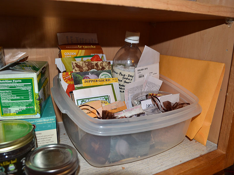How do you store your seeds? Let us know!