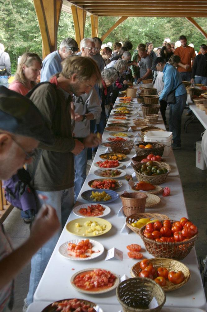 Tomato Tasting at Seed Savers Exchange