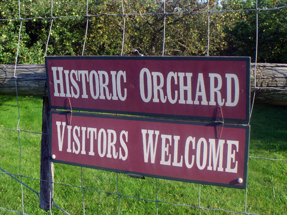 orchard-sign.jpg