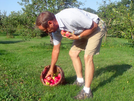 Dan-pickin-apples.jpg