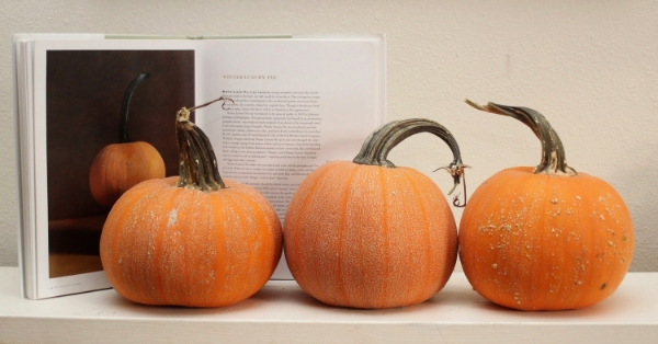 Winter Luxury Squash are featured in Amy Goldman's book,  The Compleat Squash.