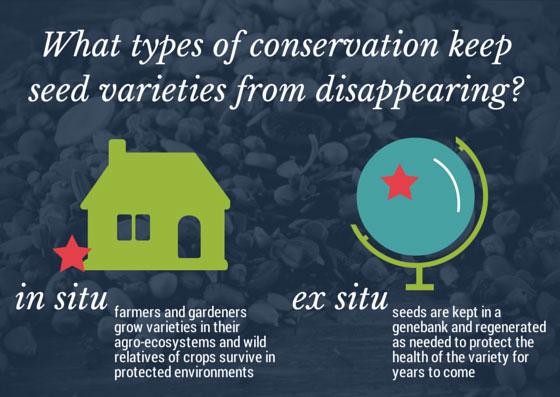 ConservationSSE.jpg