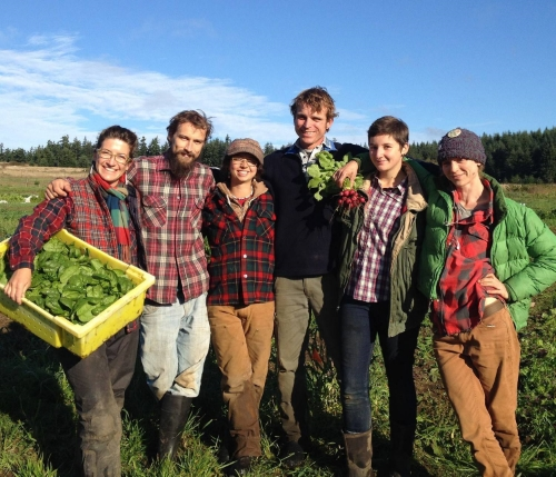 "The mission of the Organic Farm School is to ""Cultivate farmers, food, and community."" Photo credit: Mike Hedge"