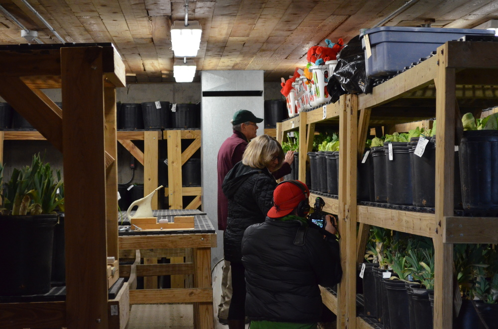 Touring the root cellar