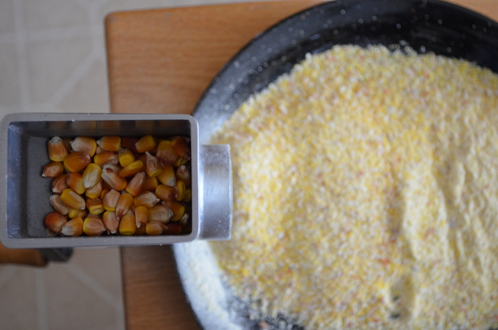 'Yellow Jarvis' corn awaits its fate in the mill