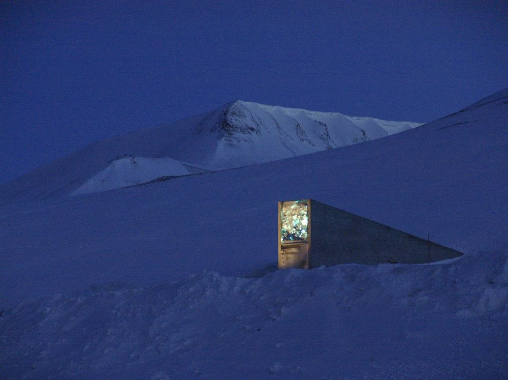 Svalbard Global Seed Vault as Seen at Night.  (Mari Tefre/Global Crop Diversity Trust. Some rights reserved.)