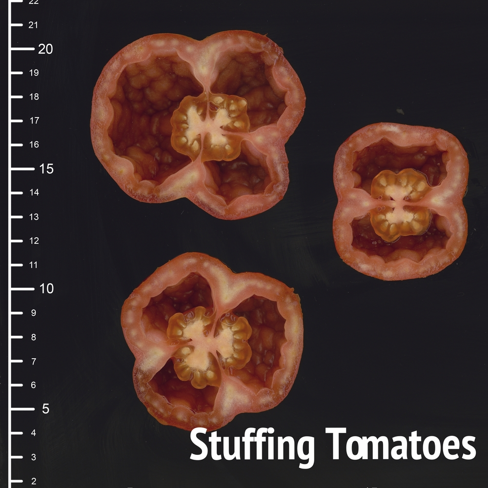 stuffing.jpg