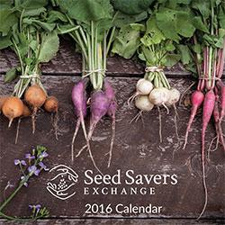 PD0385-calendar.jpg