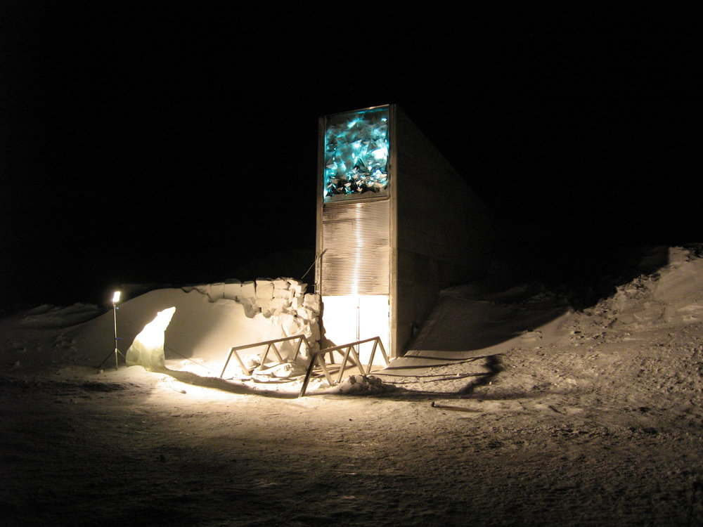 Lights illuminate the entrance to the Global Seed Vault in Svalbard, shown at night shortly after the vault opened in 2008.