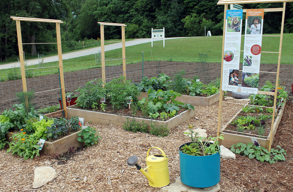 the new small-space garden at Heritage Farm showcases Raised beds, trellises, and fast-growing varieties.
