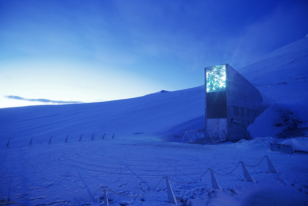 The entrance to Svalbard Global Seed Vault, which tunnels 500 feet into a mountain in Spitsbergen, part of Norway's Svalbard archipelago, is a mere 800 miles from the North Pole.