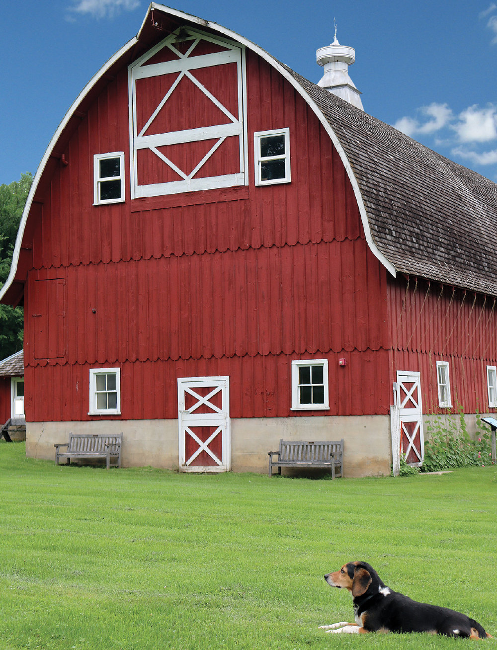 barn_fred_CROP.jpg