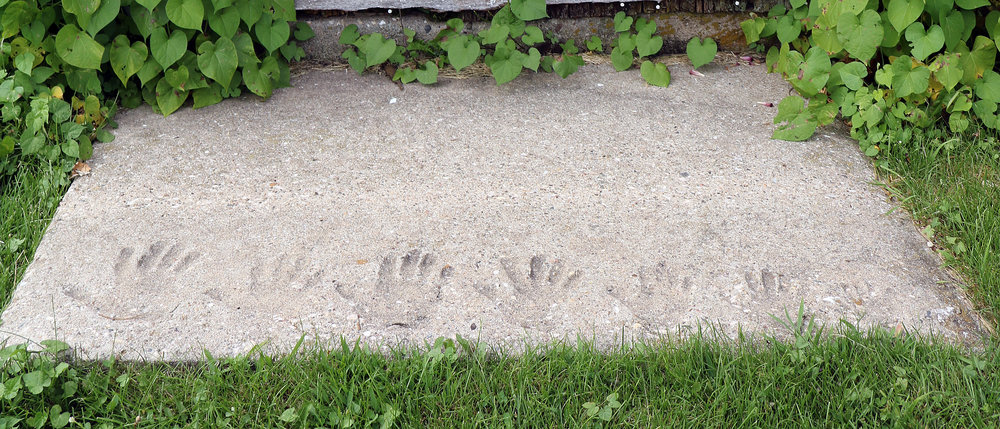 The Whealy family handprints preserved in a concrete step by the barn at Heritage Farm.