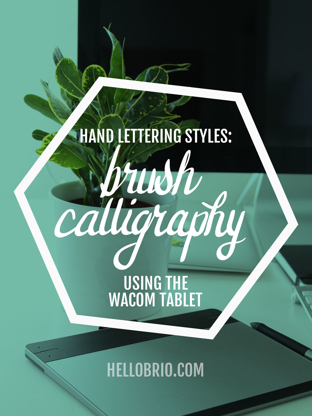 Click through to learn how to do brush calligraphy using the Wacom tablet - Illustrator and Hand Lettering Tutorial: Brush Calligraphy Using a Wacom Tablet - HelloBrio.com