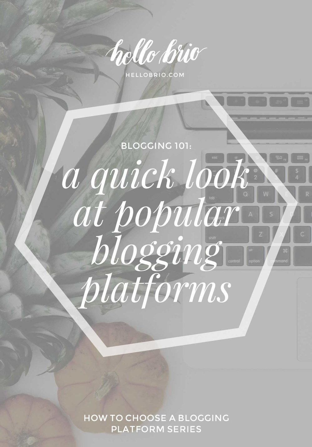 how to choose a blogging platform quick start guide on hellobrio.com