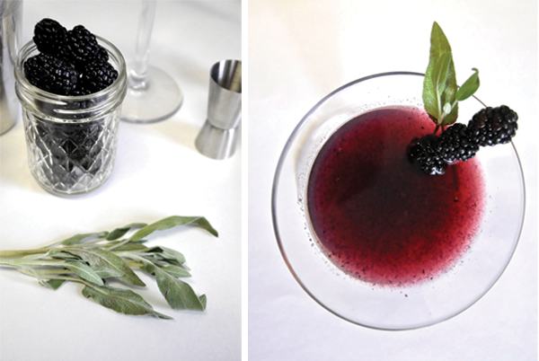 DOW-blackberry-sage_2