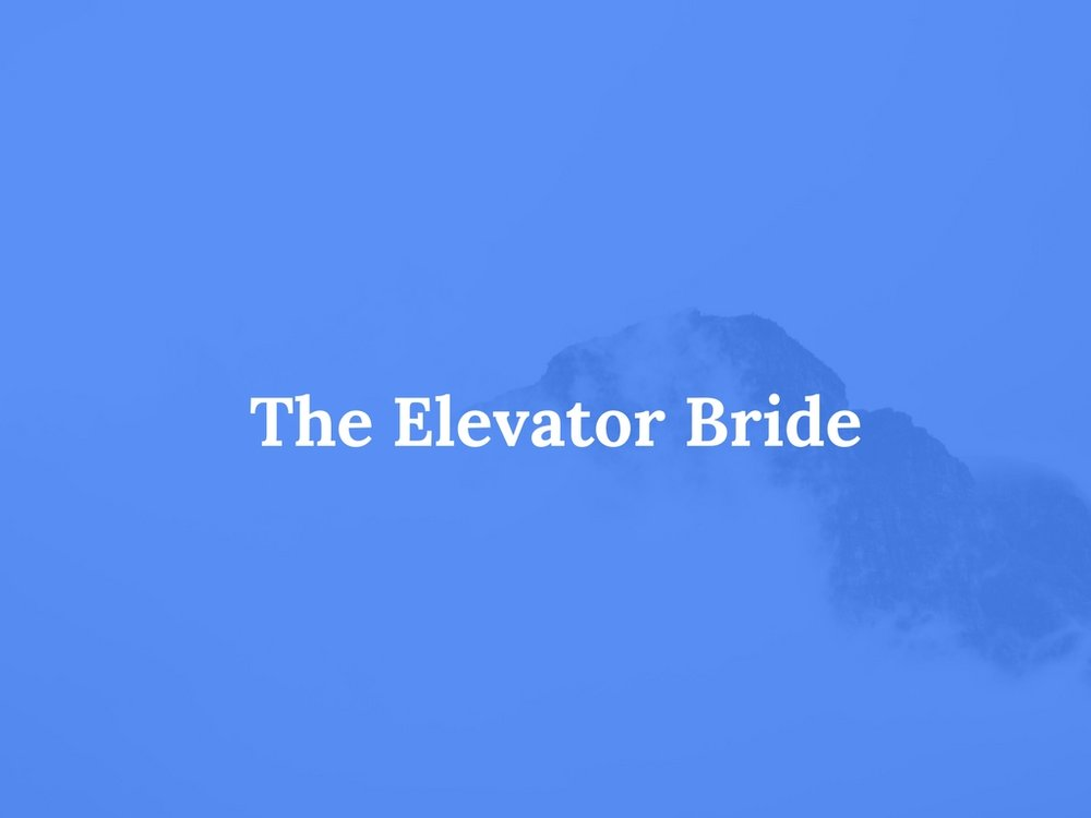 Read The Elevator Bride