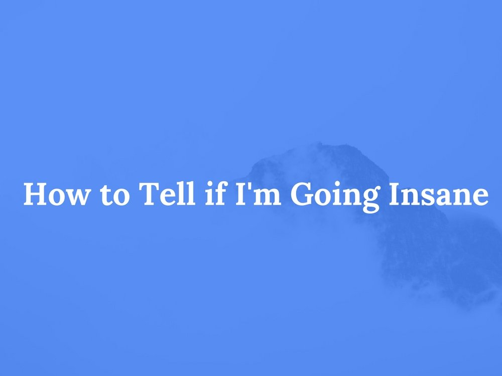 Read How to Tell if I'm Going Insane