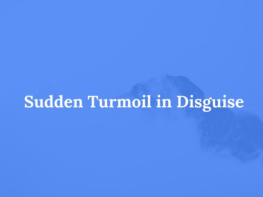 Read Sudden Turmoil in Disguise