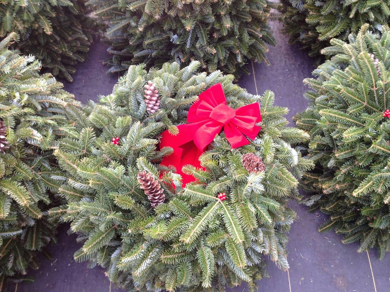 Whitehouse Christmas Tree Farm — Wheeler Farms