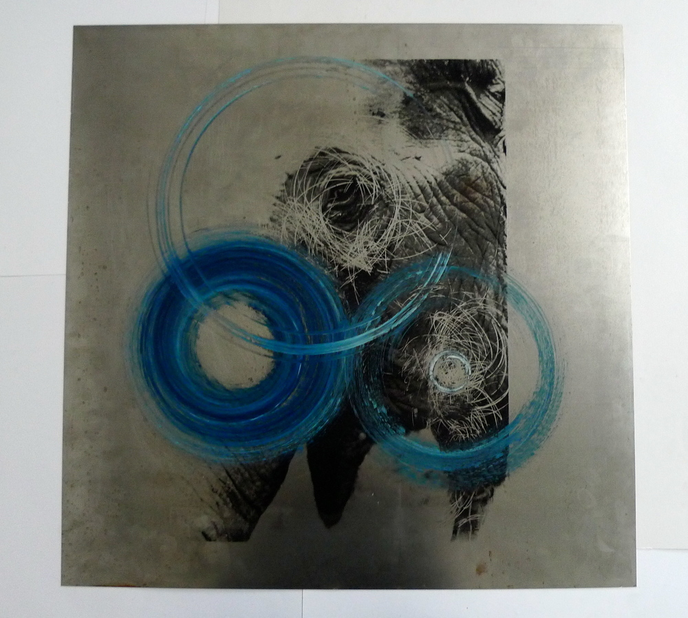 "Elephant with Blue Circles  Silkscreen, oil paint spun on steel  24"" x 24"""