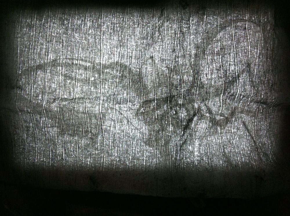 Cloth and cut paper on lightbox 2012