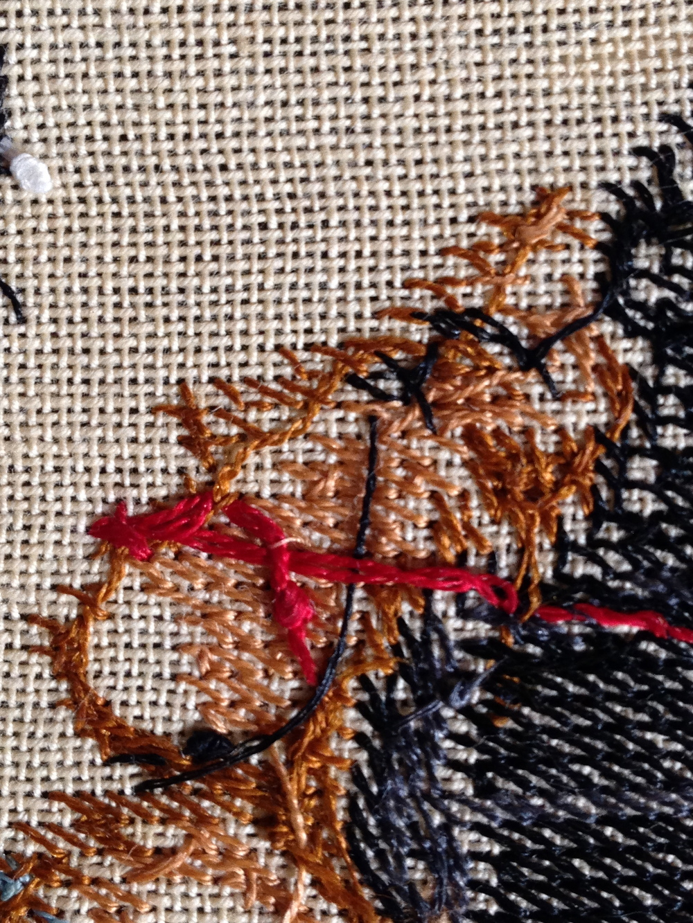 Needlepoint II Photograph 2014