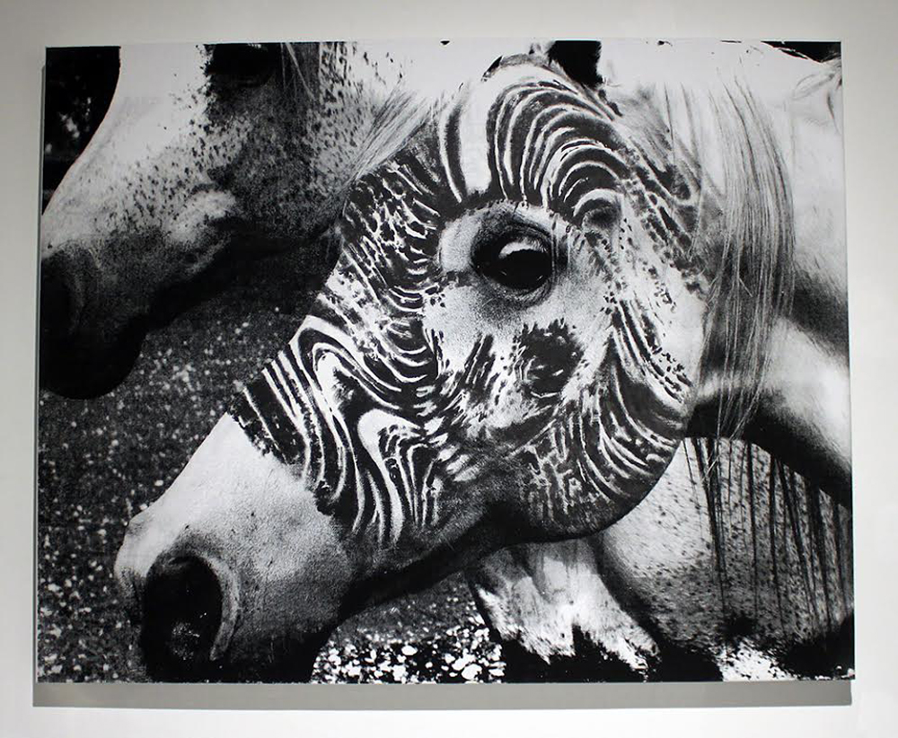 "'Arabian Ink'  Photo & oil on canvas - Edition of 3  26"" x 33""  In the collection of Roxx - 2 Spirit Tattoos San Francisco"
