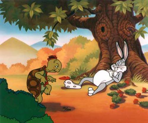 tortoise hare.jpg
